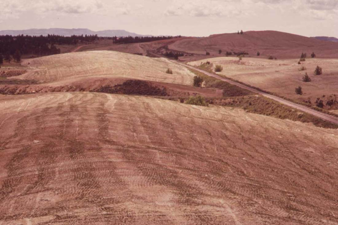 Old spoil piles are flattened and planted in an attempt at reclamation. Dry climate and shallow soil permit only sparse growth, June 1973