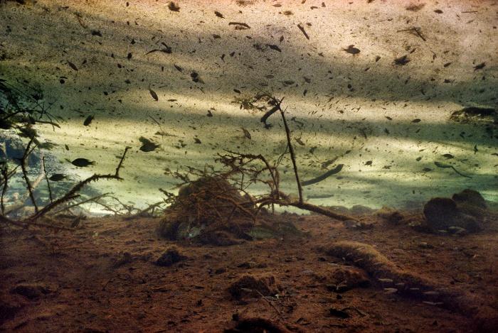 Dust Storm in Catfish Sink, 2006 © Karen Glaser