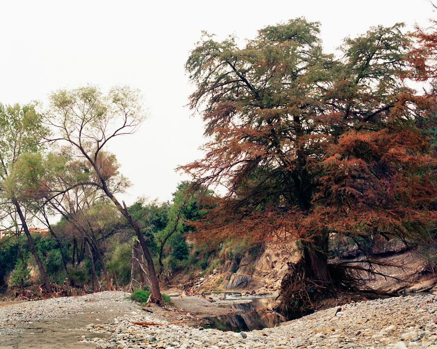 cartagena-lostrivers-516