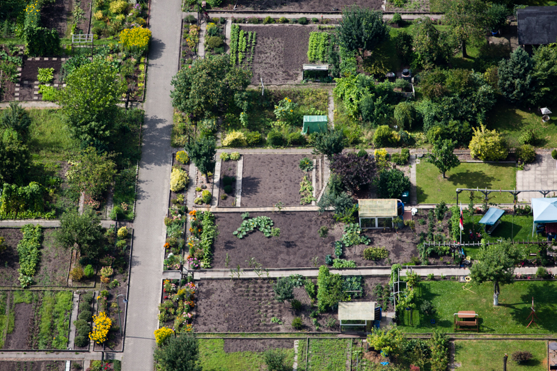 "Bremen, Germany. Allotment gardens (""Schrebergärten"") are an important source of fresh local produce."