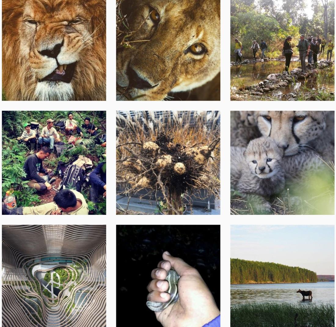 #biodiversity