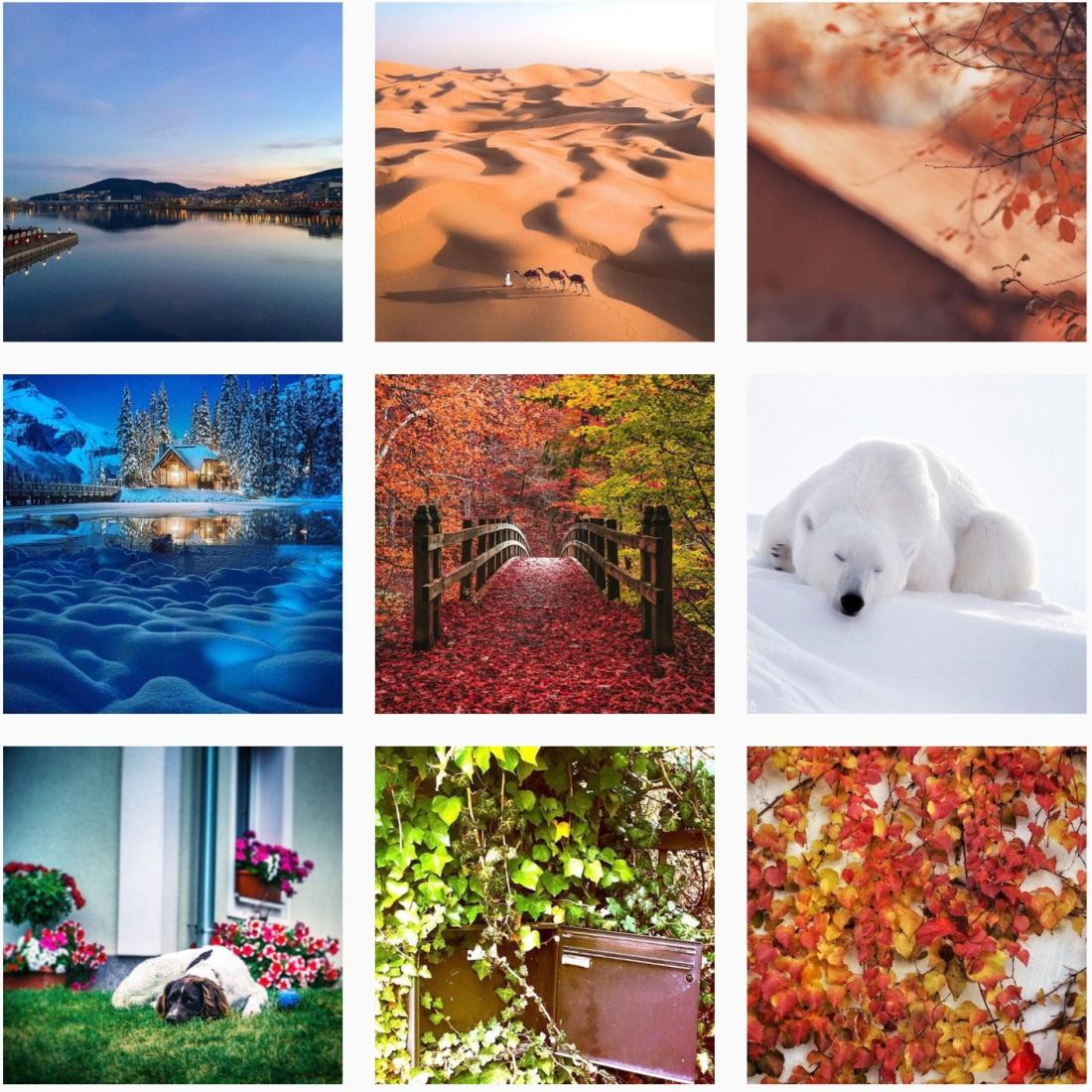 #naturephotography